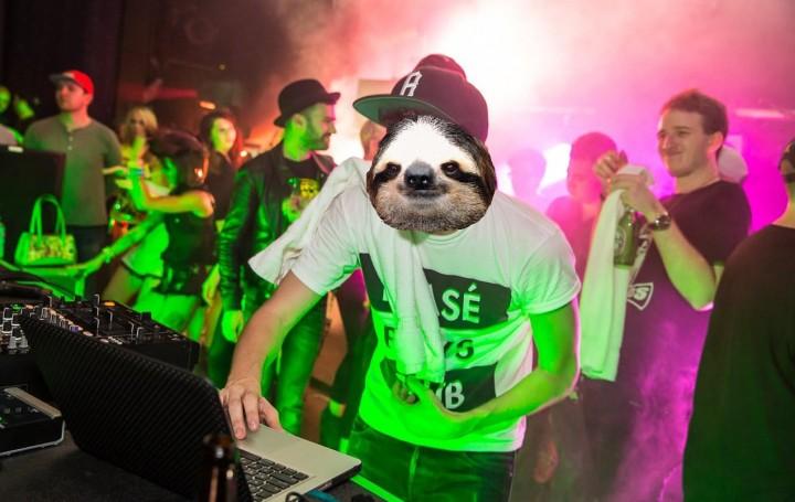 DJ Sloths