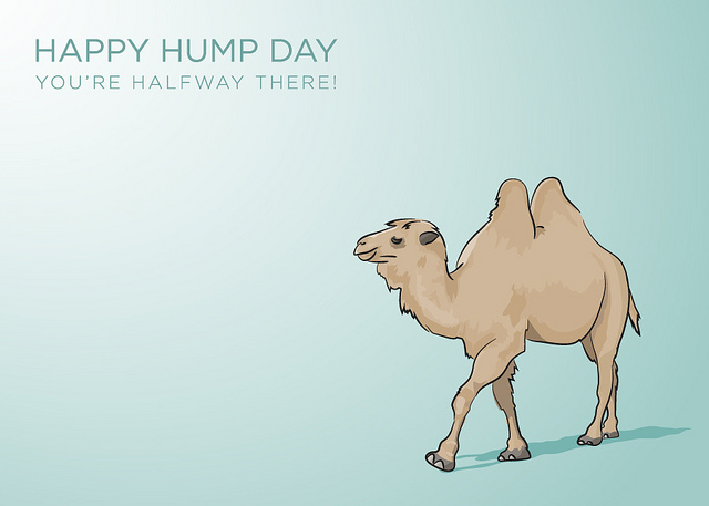 It's Hump Day!